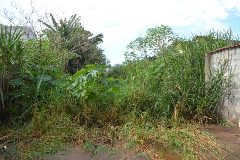 Ratinho propõe a limpeza de córrego que desapareceu em meio ao matagal no centro